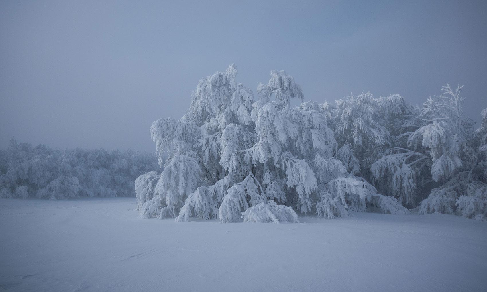 vosges-sous-la-neige-10