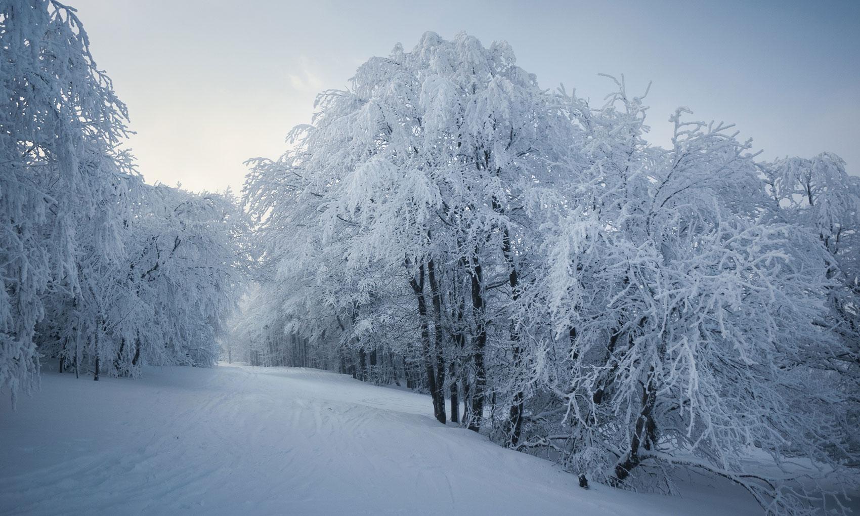 vosges-sous-la-neige-11
