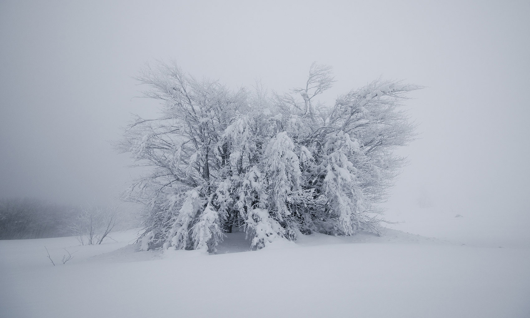 vosges-sous-la-neige-17